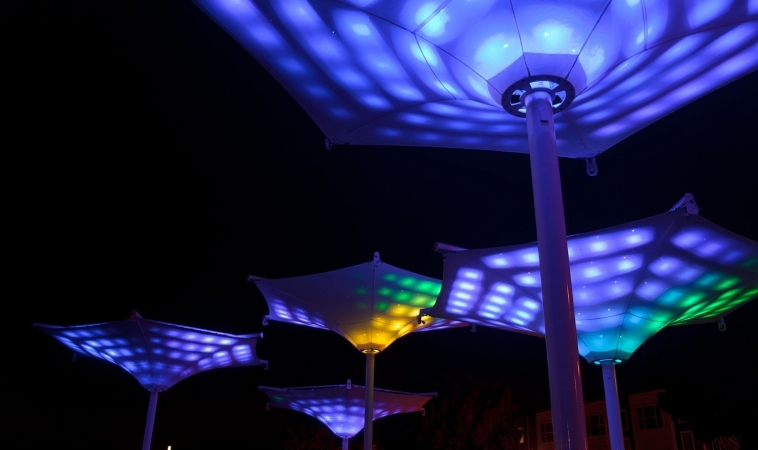 Interactive Lighting in Fresno, CA completed!